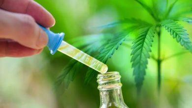 Photo of Factors that Affect How Long CBD Stays in Your System